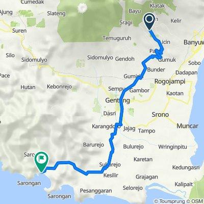 Ijen Resort to Java Turtle Homestay