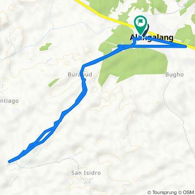 Romualdez Street 158, Alangalang to San Roque Street 475, Alangalang