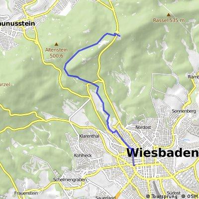 Wiesbaden Statdtmitte - Platte