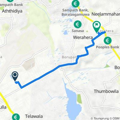Route to DMT - Werahera