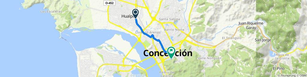 De Puerto Varas 70–88, Hualpén a Sendero Sur Parque Ecuador, Concepción