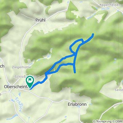 Route von Am Schloßberg 20, Oberscheinfeld