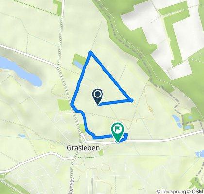 Friedhofstraße 26, Grasleben nach Magdeburger Straße 16, Grasleben