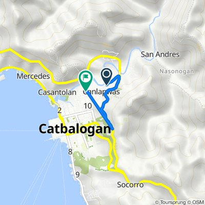 Canlapwas Road 484, Catbalogan City to Muñoz-Canlapwas Road 131, Catbalogan City
