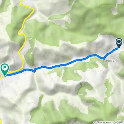 Route naar DN14, Slimnic