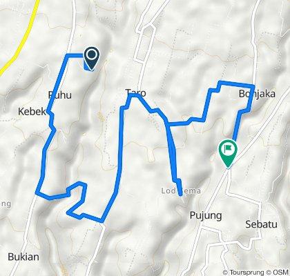 Route to Jalan Raya Pujung, Gianyar