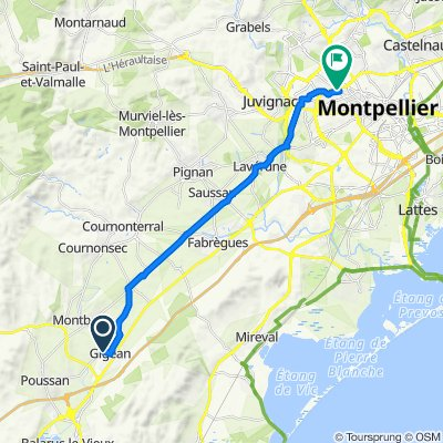 De 20 Rue du Stade, Gigean à 317 Avenue du Professeur Louis Ravas, Montpellier