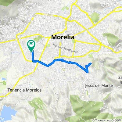 De Calle Cactus, Morelia a Calle Pase de la Rosa, Morelia