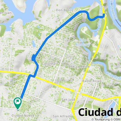 De Ciudad del Este a Julio Cesar Riquelme, Ciudad del Este