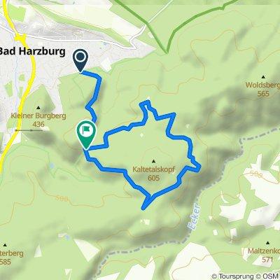 Wanderung zum Luchsgehege in Bad Harzburg 1