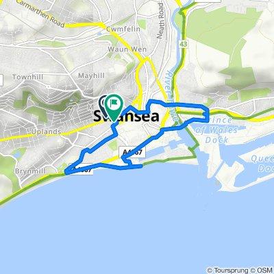 Mansel - Swansea University - mansel