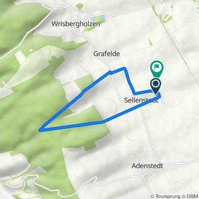 Route von Lindenweg 21, Adenstedt
