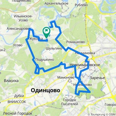 Barvicha-Skolkovo-53