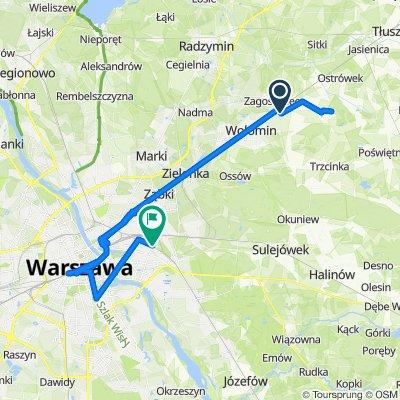 Willowa 22A, Duczki do Warszawa Olszynka Grochowska