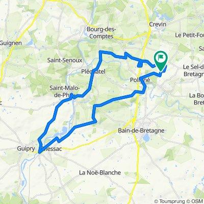 De La Poinconnière, Pancé à La Poinconnière, Pancé