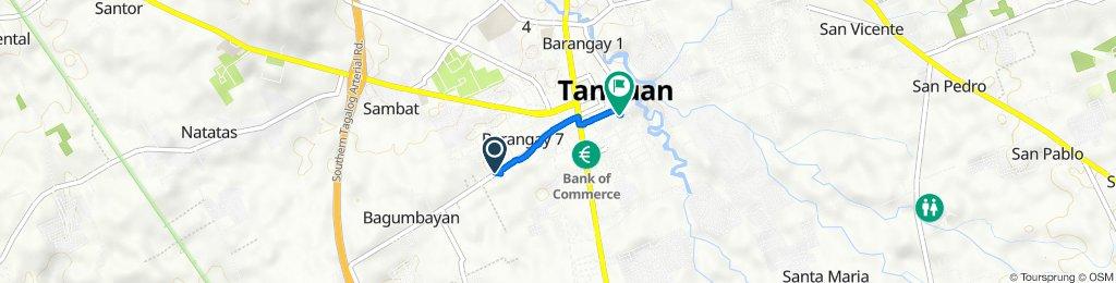 Bagumbayan Road, Tanauan to P Carandang Street 12, Tanauan