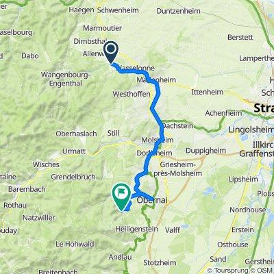 9 Auf Bahntrassen von Romanswiller über Molsheim, Obernai nach Saint-Nabor