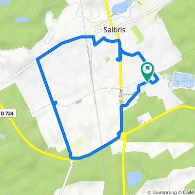 Itinéraire vers Rue de Touraine 2, Salbris
