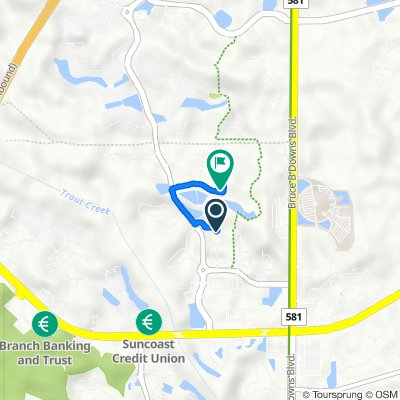 27619 Baybrook Loop, Wesley Chapel to 2731 Blue Springs Pl, Wesley Chapel