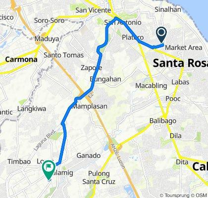 Pili Street, Santa Rosa to Trade Avenue 4024, Biñan