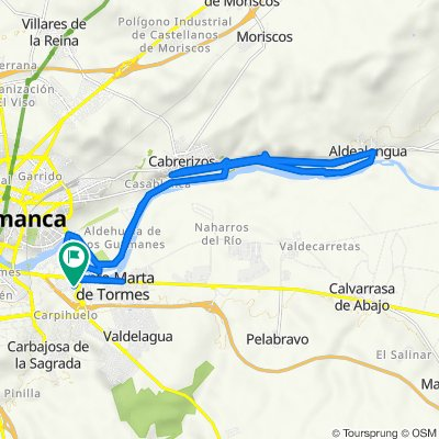 De Avenida de Asturias, 29, Santa Marta de Tormes a Avenida de Asturias, 29, Santa Marta de Tormes