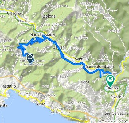 Da Salita al Santuario 20, Rapallo a SS225, Carasco