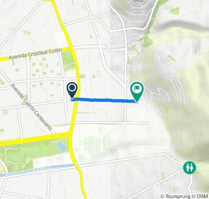 De Avenida Alejandro Fleming 8910–8912, Las Condes a Avenida Alejandro Fleming 9609, Las Condes