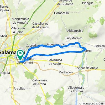 De Avenida de Asturias, 29, Santa Marta de Tormes a Avenida de Asturias, 30, Santa Marta de Tormes