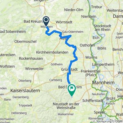 RLP13: Wöllstein - Deidesheim 87km 700hm