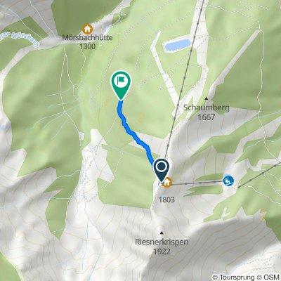 Donnersbachwald nach Riesnerweg
