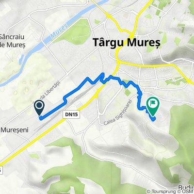 Traseul din Strada Băneasa 43–53, Târgu Mureş