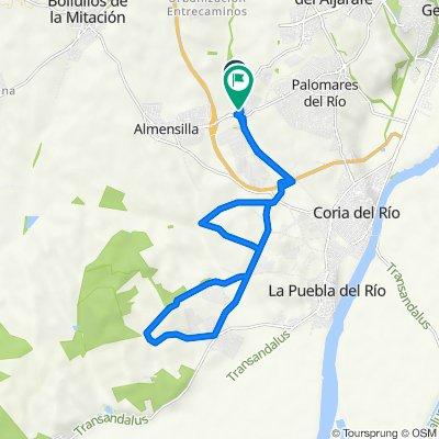 De Carretera Mairena - Almensilla 3, Mairena del Aljarafe a Calle Arroyo Río Pudio 31, Palomares del Río