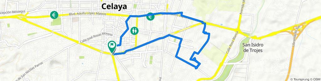 De Avenida Constituyentes 100, Celaya a General Ignacio Allende 540A, Celaya