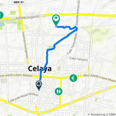 De Ignacio Allende 313, Celaya a Paseo de La Alameda 142, Celaya