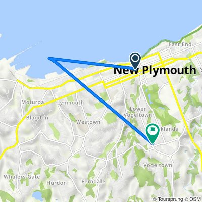 42 Currie Street, New Plymouth to 257 Carrington Street, Vogeltown