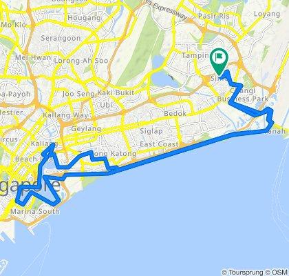 Route to Simei Street 5 245, Singapore