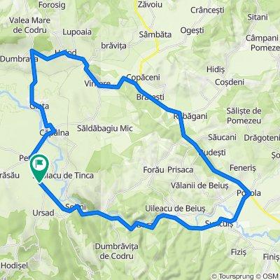 Holod-Ginta-Petid-Soimi-Pocola-Bratesti-Vintere-Holod