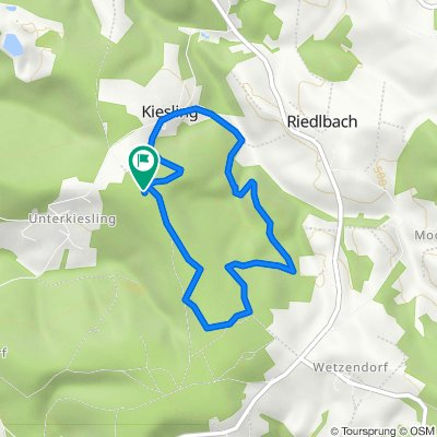🦮🚶♀️🚶♂️🇦🇹Ringlholz Runde mit Lenny Wald Wald Wald 30.09.20.  mit 🎥