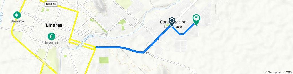 De Calle Juan Montero 175, Linares a Calle Chiapas 2216, Linares