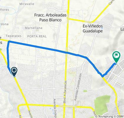 De Boulevard Licenciado Miguel De La Madrid Hurtado 125, Aguascalientes a Manuel Fernández Sánchez 112, Aguascalientes