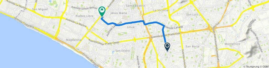 Ruta a Avenida Cayetano Heredia, Lima