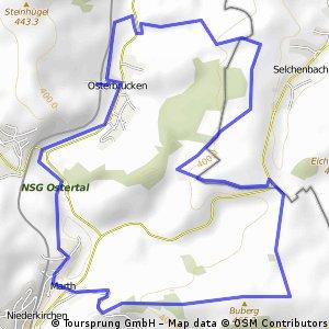 St. Wendel - Tour 7 (Osterbrücken)