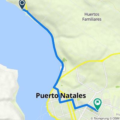 Ruta a Patagonia 1226, Natales