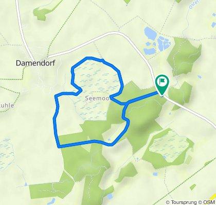 Damendorfer Seemoor