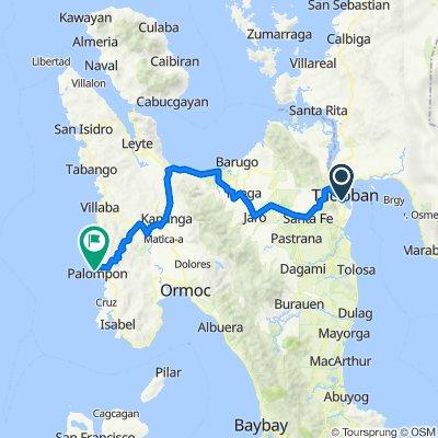 Dadison Street 24, Tacloban City to Calubian - San Isidro - Tabango - Villaba - Palompon Road 209