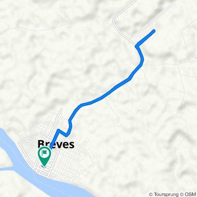 Passeio rápido em Breves