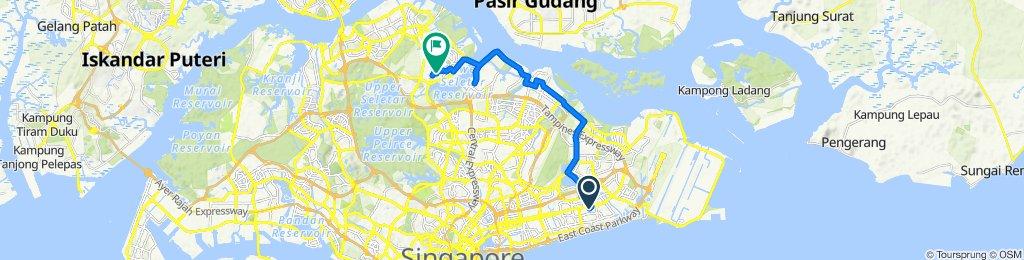 63 New Upper Changi Road, Bedok to 846 Yishun Ring Road, Yishun