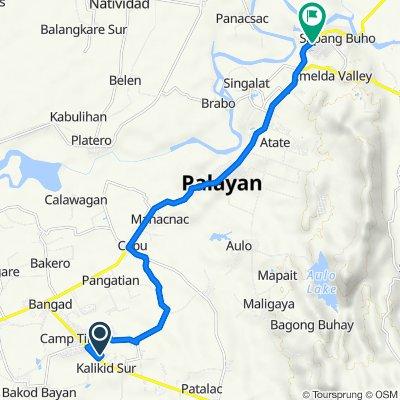 Route to Nueva Ecija-Aurora Road, Bongabon