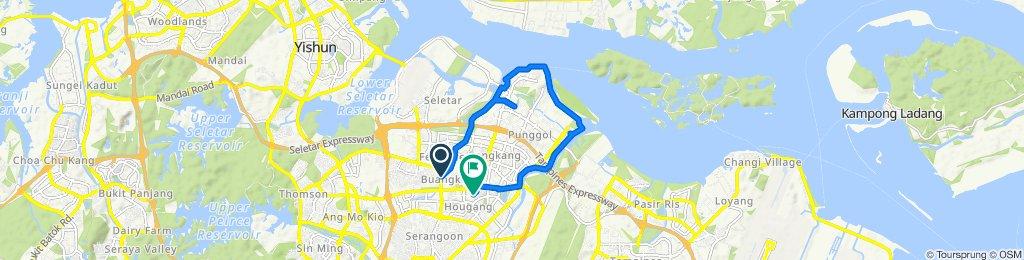 298 Yio Chu Kang Road, Sengkang to 569 Hougang Street 51, Hougang