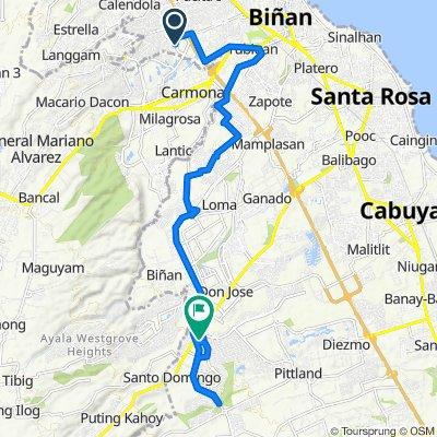 East Road 300, Biñan to Santa Rosa - Tagaytay Road 1